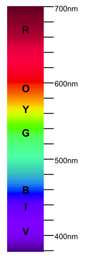 The Spectrum of Visible Light